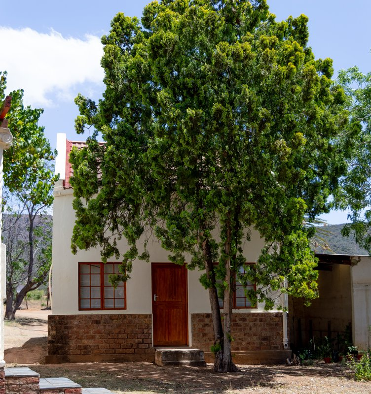 brakkefontein-game-farm (10)