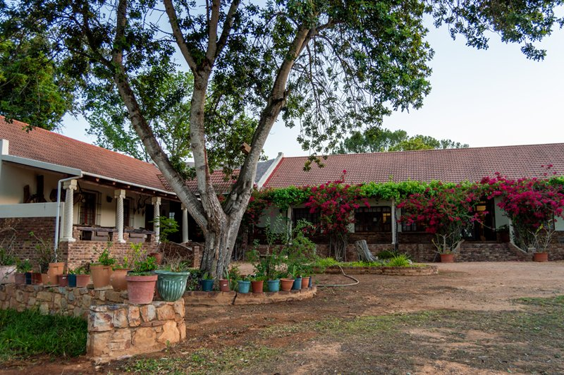 brakkefontein-game-farm (7)