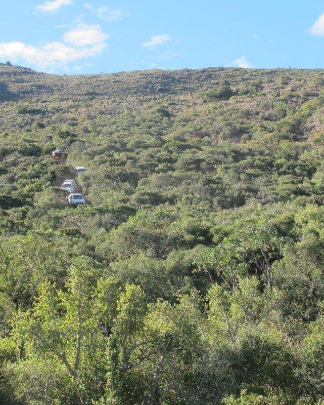 brakkefontein-guest-farm
