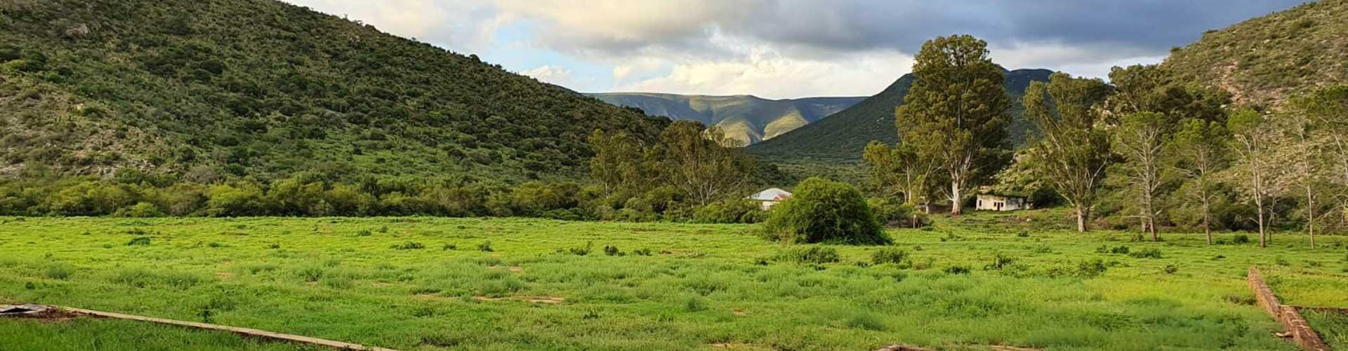 brakkefontein-game-farm-landscape